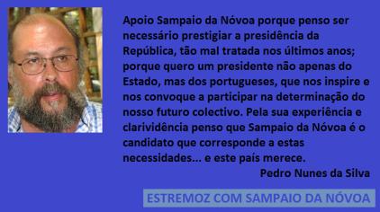 Pedro Nunes da Silva